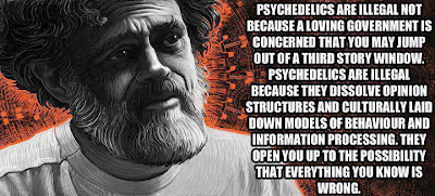 Psychedelics-are-illegal-not-because-a-loving-government-is-concerned-that-you-may-jump-out-of-a-third-story-window.-Psychedelics-are-illegal-because-they-dissolve-opinion-structures-and-culturally-laid-down-models
