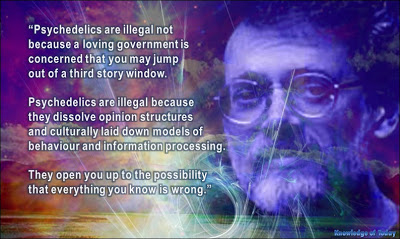 Psychedelics are illegal not because a loving government is concerned that you may jump out of a third story window. -Terence McKenna