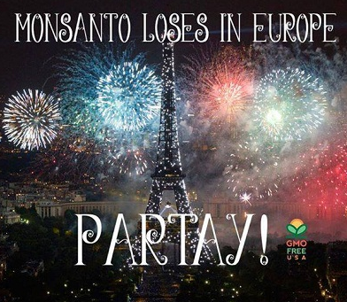 Monsanto Halt Production In Europe
