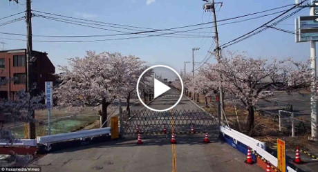 Unmanned aircraft (drones) footage from Fukushima