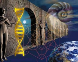 DNA 2