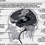 8 Ways That Music Benefits Our Brain