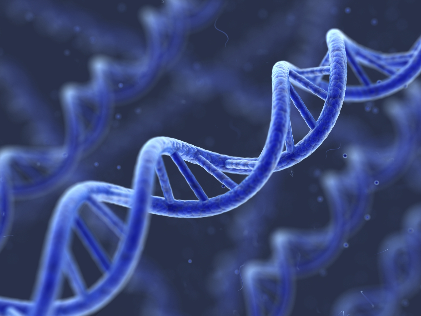 Share DNA