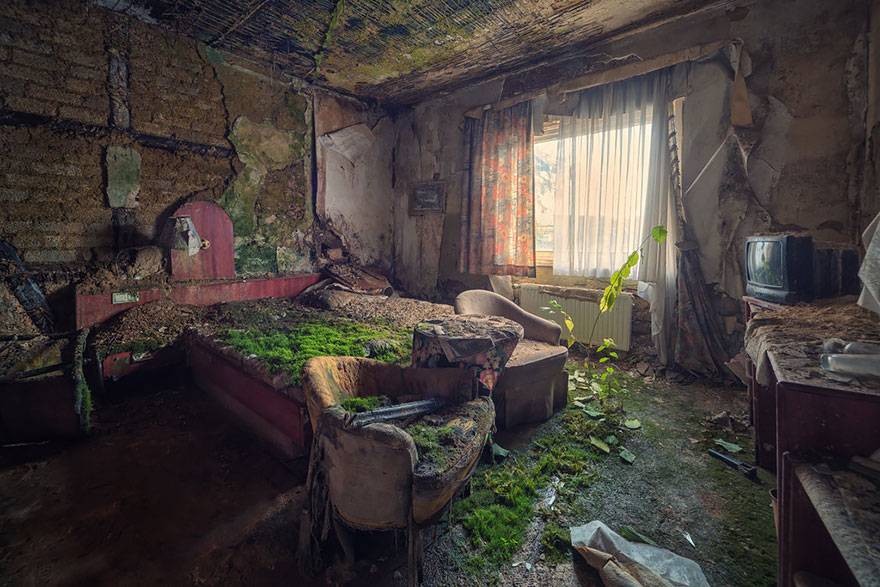Abandoned hotel room. Guests can be left covered with moss and lichens