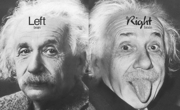 This Explains Why Einstein's Brain Was Special-truthinsideofyou