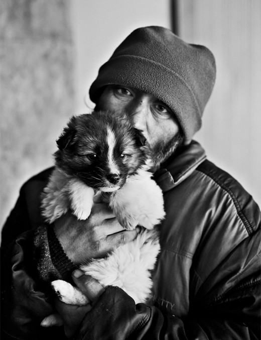 homeless-animals-love