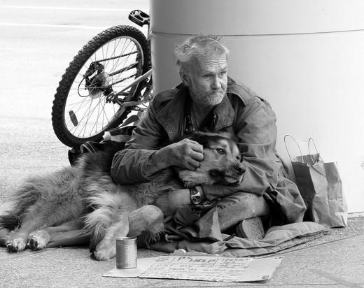 homeless companionship