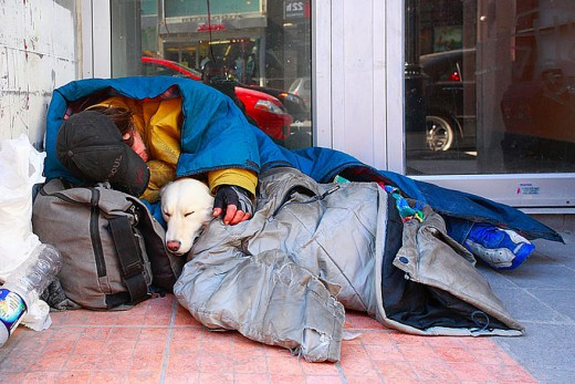 712372_homeless-dogs-and-owners-2