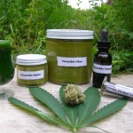 How To Make Your Own Cannabis Oil – Curing Cancer