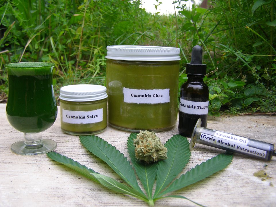Here Is How To Make Cannabis Oil (VIDEO)!