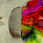 Left Brain Vs Right Brain: The Eye Opening Insights