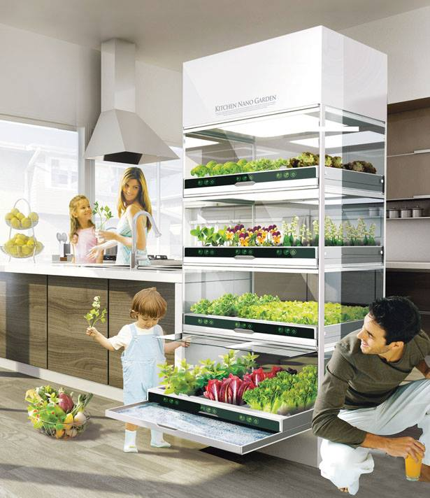what-if-you-could-grow-fresh-organic-veggies-herbs-right-in-your-kitchen-you-can 1