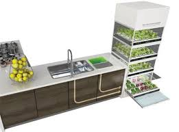 what-if-you-could-grow-fresh-organic-veggies-herbs-right-in-your-kitchen-you-can 3