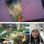 A girl sells plush toys and gives money to a stray animal shelter.