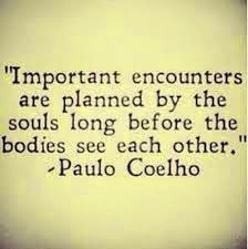 Important_encounters_are_planned_by_the_souls_long_before_the_bodies_see_each_other_paulo_coehlo