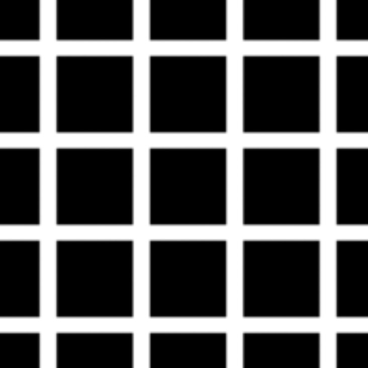 hermann_grid_illusion_test