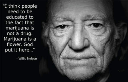 10 Famous Stoner Quotes from Public Figures. - Truth Inside ...