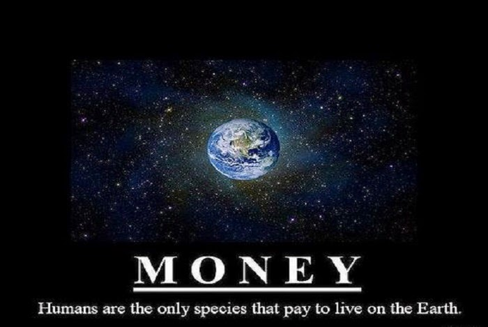 money_humans_are_the_ony_species_that_pay_to_live_on_earth