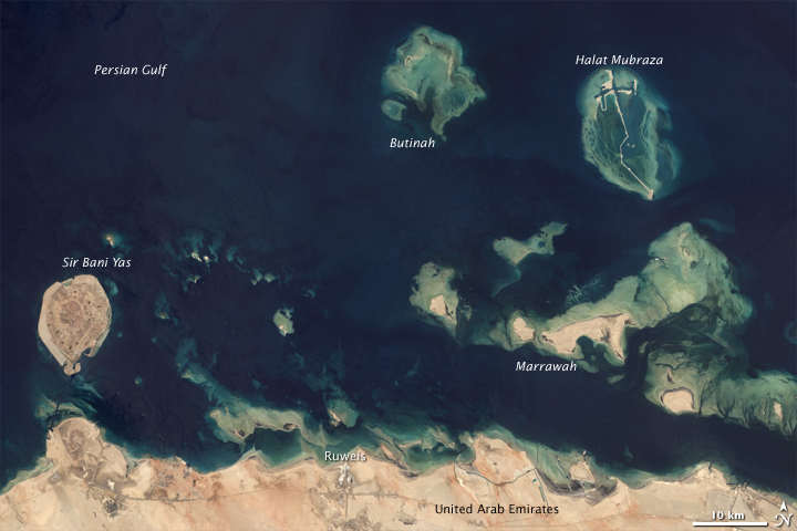 persian coral reef's