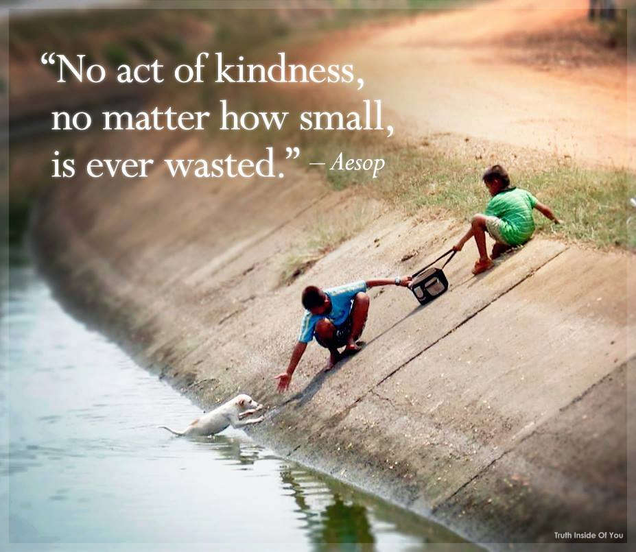 Image result for no act of kindness is ever wasted