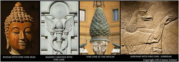 the-third-eye-pine-cone