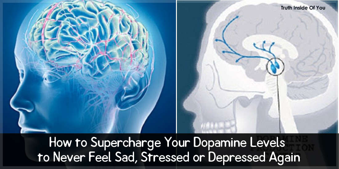 How to Supercharge Your Dopamine Levels to Never Feel Sad, Stressed or Depressed Again.