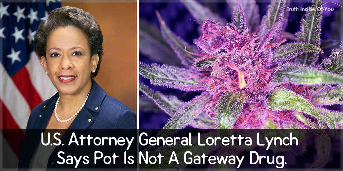 U.S. Attorney General Loretta Lynch Says Pot Is Not A Gateway Drug.