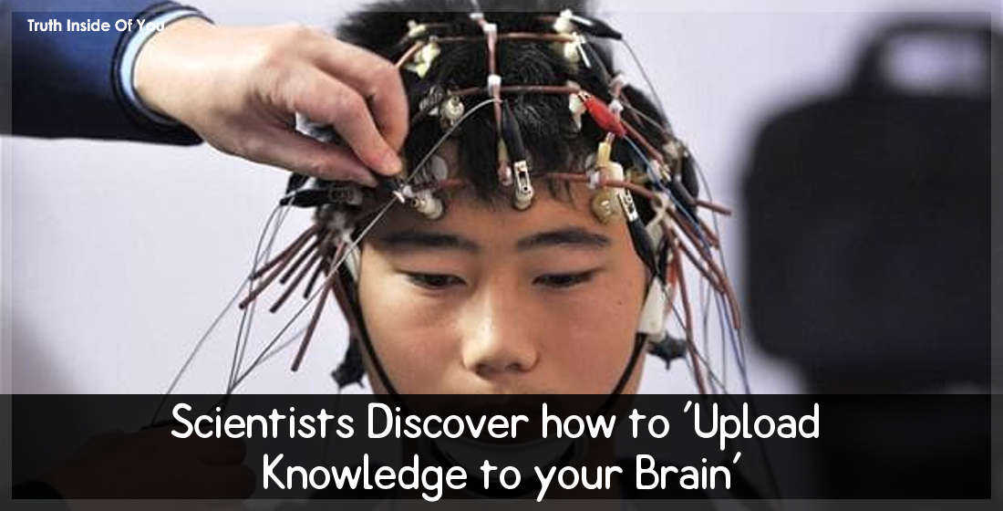 Scientists Discover how to 'Upload Knowledge to your Brain'