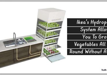 Ikea's Hydroponic System Allows You To Grow Vegetables All Year Round Without A Garden