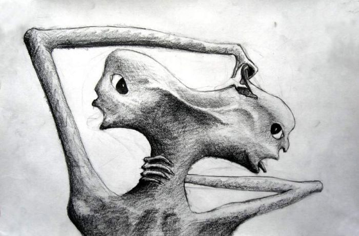 paranoid schizophrenic