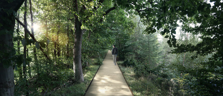 Circular Staircase Over The Danish Forest Offer a Great Experience.6