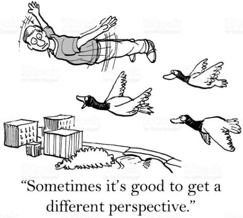12. New Perspective