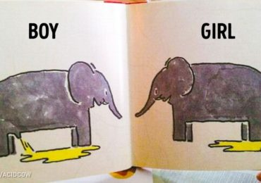 21 Images Discovered in Kids Books That Raise So Many Questions