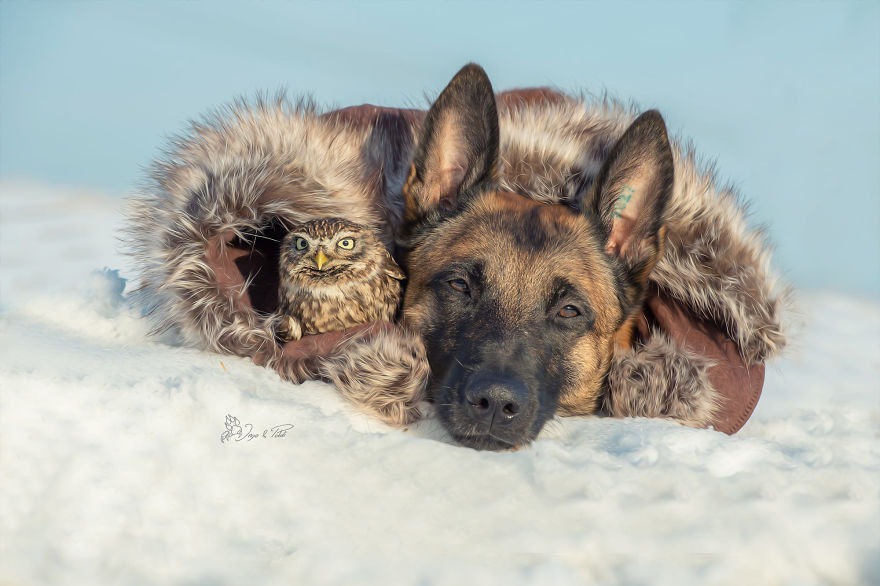 26. Poldi and Ingo snuggle up together inside a coat to stay warm in the freezing snow