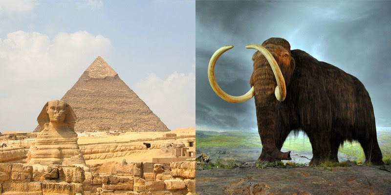 9. The first pyramids were built while the woolly mammoth was still alive.