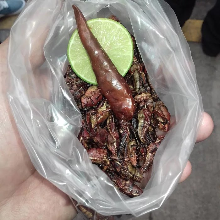 3. Chapulines, Mexico