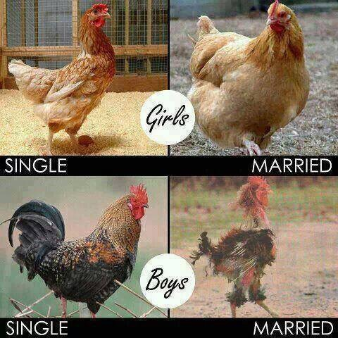 Single Vs Being Married-6