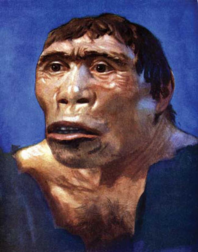 2. Java Man