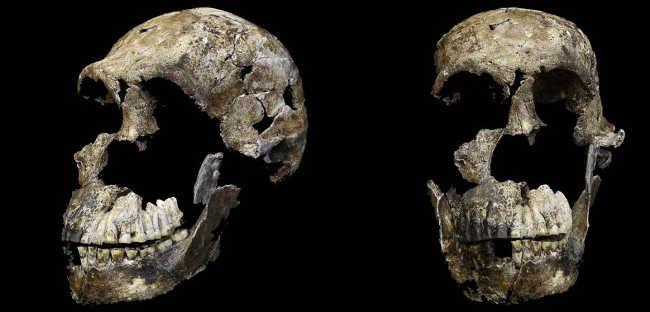 9. Homo Naledi