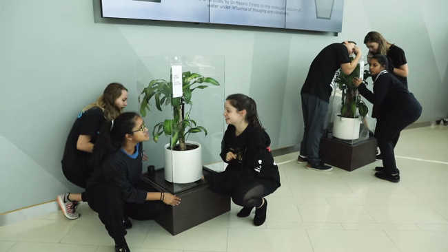 Bullying a Plant Brings Out Astonishing Results That Will Make You Think - 11