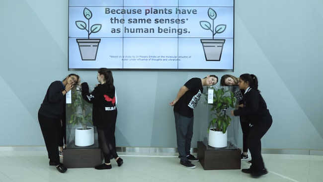 Bullying a Plant Brings Out Astonishing Results That Will Make You Think - 3