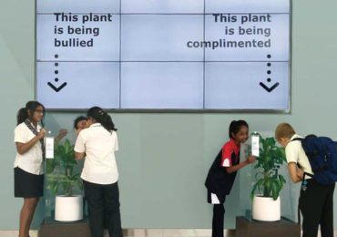 Bullying a Plant Brings Out Astonishing Results That Will Make You Think