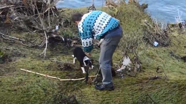 Man Climbs Down A Bridge On Nisava River To Rescue A Dog-2