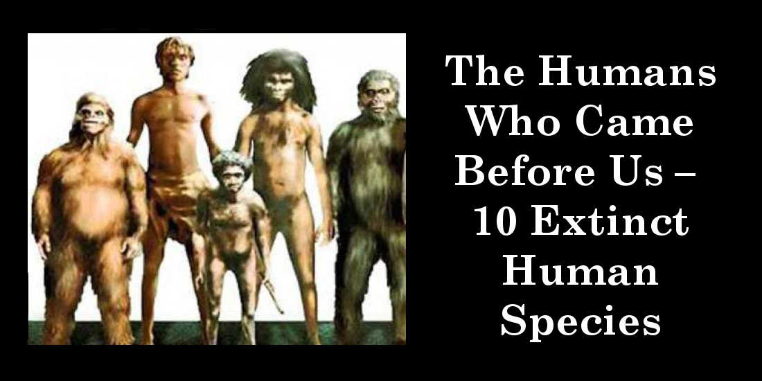 The Humans Who Came Before Us – 10 Extinct Human Species