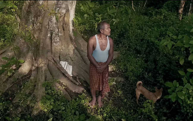 This Man Planted A Tree Every Day For Four Decades And Changed This Island-10