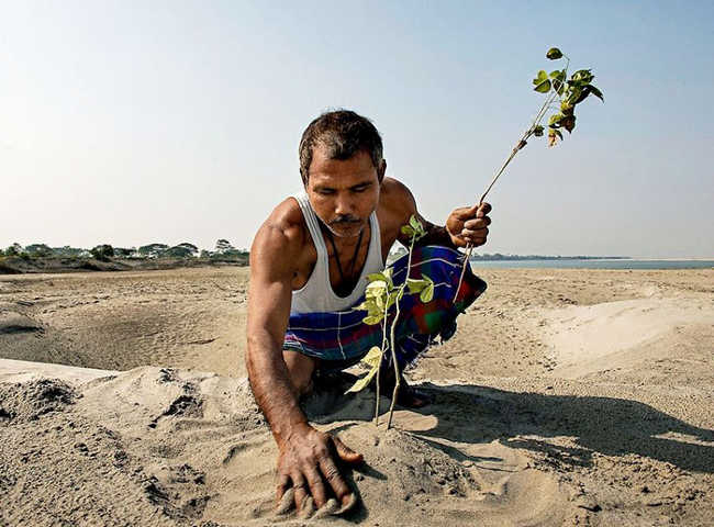 This Man Planted A Tree Every Day For Four Decades And Changed This Island-5