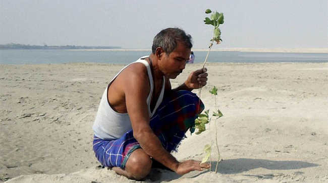 This Man Planted A Tree Every Day For Four Decades And Changed This Island-7