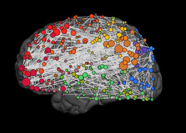 15. A human brain has a capacity to store five times as much information as Wikipedia