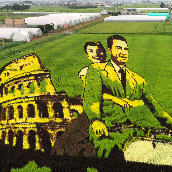 1. Rice Paddy Art