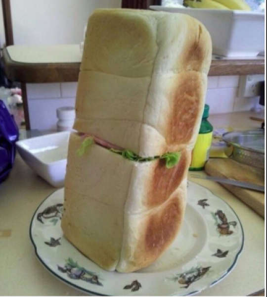 10. Sandwich or Bread